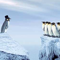 La imagen muestra dos bloques de hielo partidos en dos, en uno de ellos se encuentra un pinguino con sombrero y en el otro se encuentran un grupo de pinguinos sin sombrero. La imagen está relacionada con el gerente y administrados de una pyme