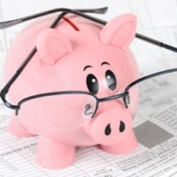 La imagen muestra una ucha de un cerdo con gafas colocado sobre unos papeles. La imagen está relacionada con la repercusión por la falta de depósito de las cuentas anuales de la empresa