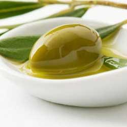Fotografía de un patillo que contien una aceituna bañada en aceite con unas hojas de olivo junto a ella en relación con el sector del aceite de oliva