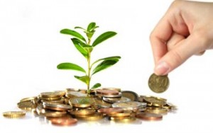 La imagen muestra una pequeña planta que nace de un puñado de monedas reflejando las ayudas y subvenciones para los empresarios