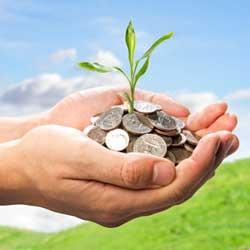 Fotografía de dos manos llenas de monedas de las que nacen una planta en referencia al seguro de responsabilidad civil de explotación