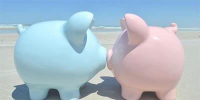 Una hucha de un cerdo azul y otra rosa besándose que representan un matrimonio en función de los bienes privativos o gananciales en un divorcio