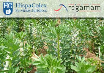 hispacolex-empresarios-mancomunidad-rio-monachil
