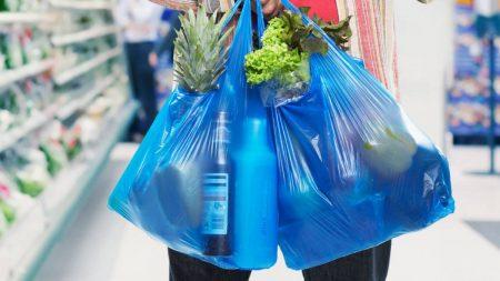 Nuevas medidas legales para la reducción del consumo de las bolsas de plástico